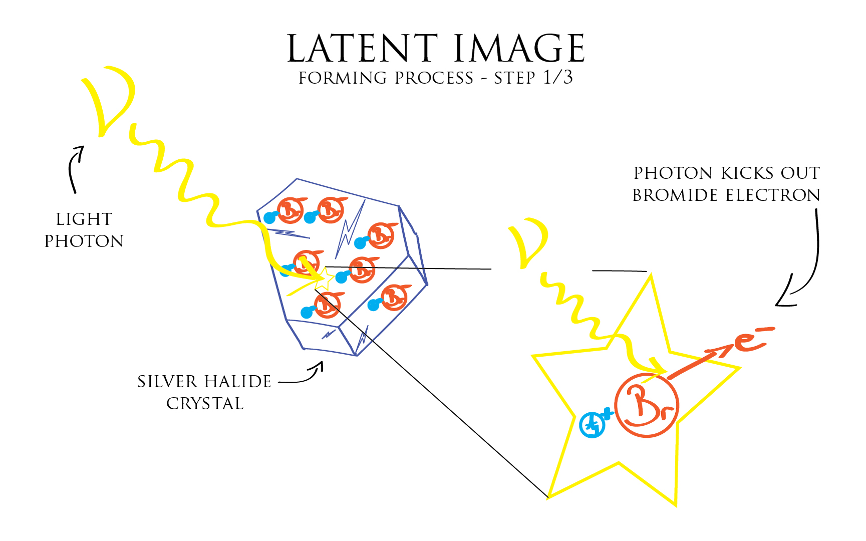 Illustration: latent image forming process 1-3