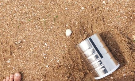 Mars on Earth: a tin can pinhole camera at the beach